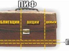 ПИФы: совместное инвестирование в России
