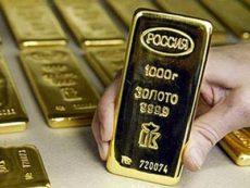 Золотовалютные резервы: значение для экономики