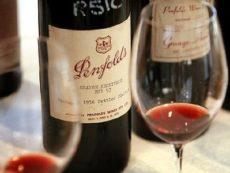 Почему вино в России такое дорогое и как можно сэкономить