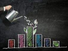 В чем разница между инвестициями и спекуляциями