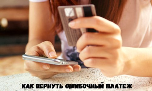 Вернуть ошибочный платеж