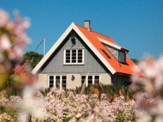 Опасные дачи: в каких случаях стоит воздержаться от покупки дома