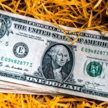 Курс доллара: прогнозы на конец недели (19 — 20 сентября 2019)