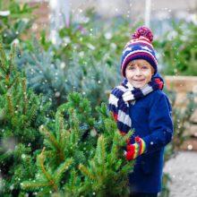 8 вариантов экономии на новогодней елке