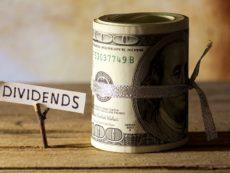 Все самое важное о дивидендах: как частный инвестор может заработать на прибыли компаний