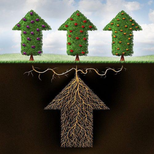 Диверсификация и доходность