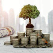 Между бизнесом и хобби: что такое альтернативные инвестиции