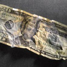 Банк не принял доллары. Обязан ли банк принять поврежденную валюту?